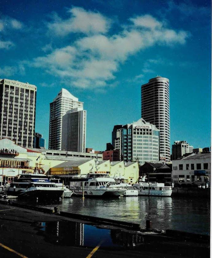 Harbor in Auckland New Zealand